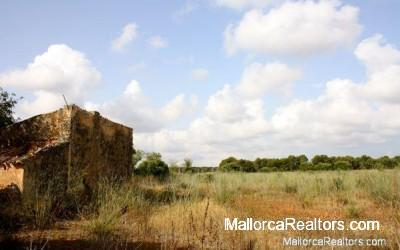 plot-with-water-llucmajor-mallorca-to-sell