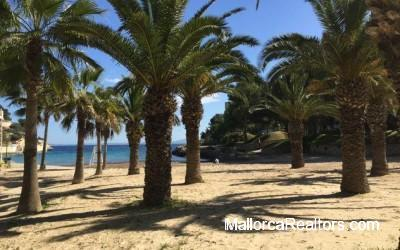 cala-vinyas-plot-mallorca