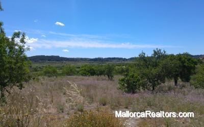 plot with panoramic views near to Sineu