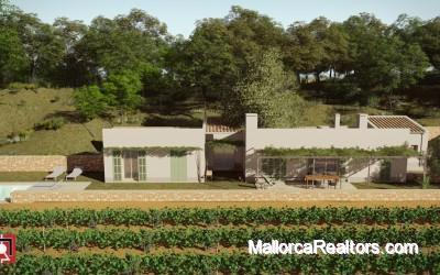 House mit vineyard Mallorca